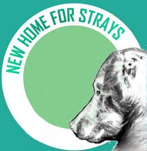 Videos – New Home for Strays